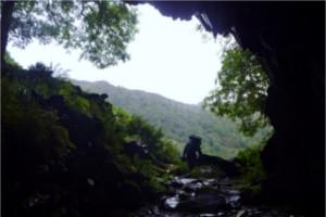 Millican Daltons Cave